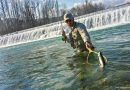 Fly fishing season 2017 is ending